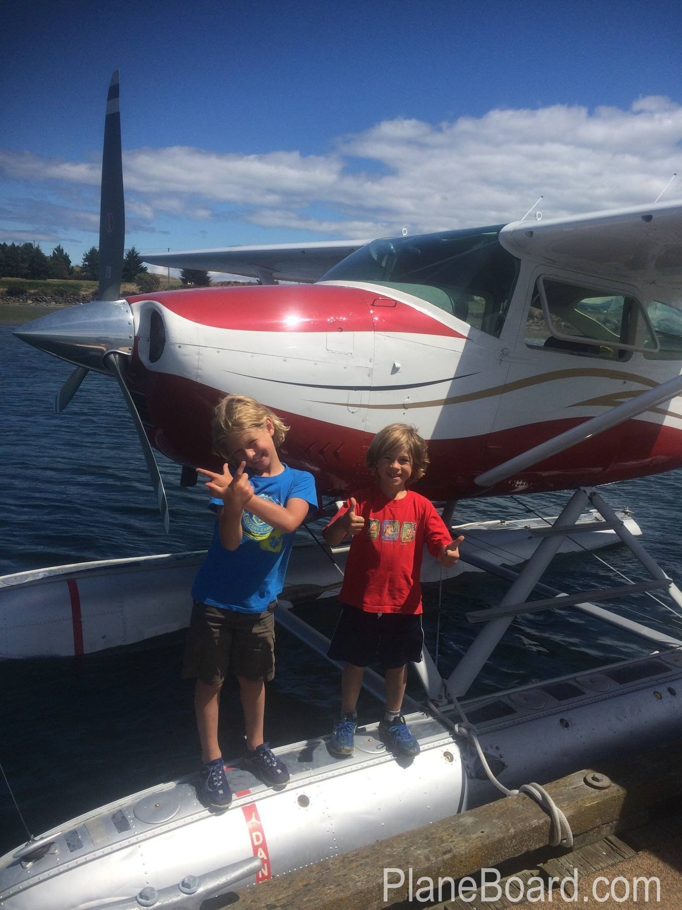 1965 Cessna 182H Skylane primary